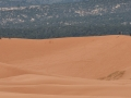 Pink Sand Dunes State Park