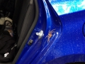 TERRYFYING but completely harmless huntsman spider. It was HUGE!