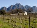 The wine region around Cape Town.