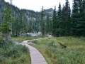 Emeral Lake trail in Rocky Mountain NP