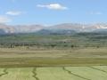 High elevation meadow in Colorado