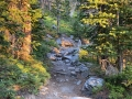Sunrise on the Fern Lake trail