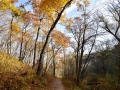 Whitewater State Park, MN