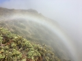 We had our own personal rainbow while hiking, it was awesome!