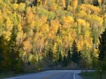 Fall in the Black Hills.