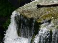 Rennselaerville Falls in Huyck Preserve. Rennselaerville, NY.