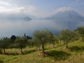 A view of Lake Como from a hiking trail.
