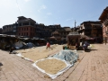 Pottery square in Bhaktapur was taken over because of the rice harvest.