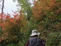 I love hiking in the fall :).