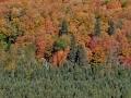 North Shore colors, MN