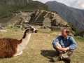 We made friends with some llamas :).
