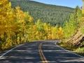 The beautiful Colorado fall.