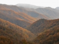 Smoky Mountains in fall.