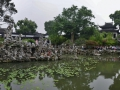 Rock garden & pond with about 1,000 other people.