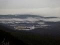 Winter fog, Albany, NY