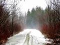 Winter fog around Albany, NY