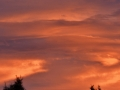 Amazing sunset in Denver
