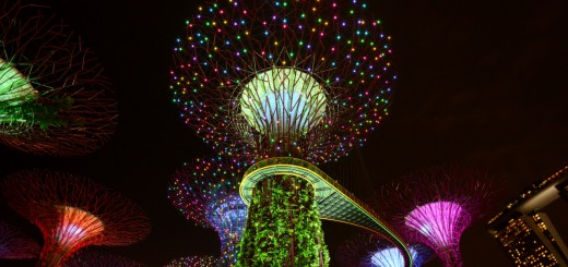 Super-trees-in-Singapore